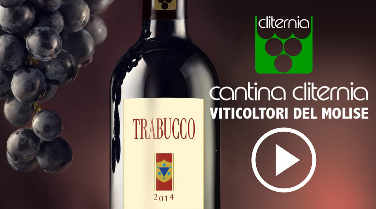Cantina Cliternia - Video Corporate 2018